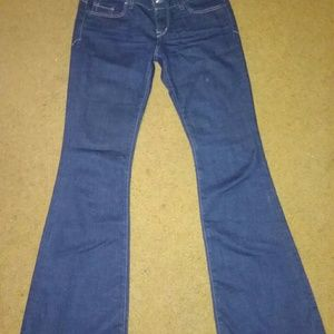 Express Fit and Flare jeans